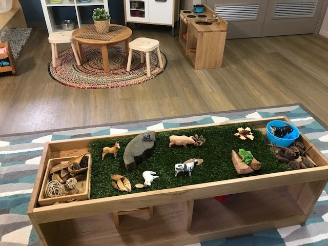 Toddler Play Area